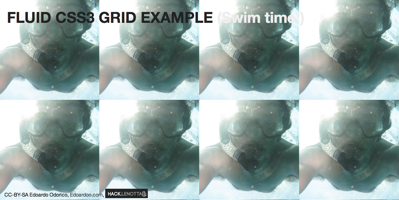 Fluid Grid Layout